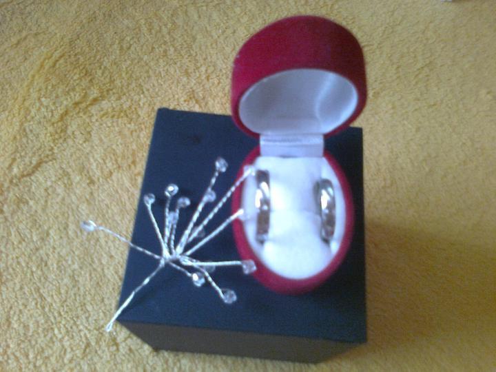 Snubni Prsteny Z Oceli 250 Kc Svatebni Bazar Beremese Cz