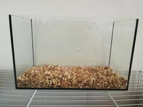 Sklenené rovné akvárium,