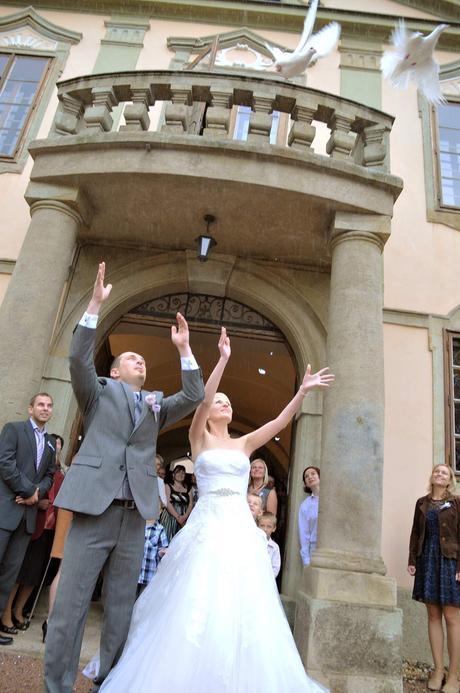 Svatební holubice a klec,