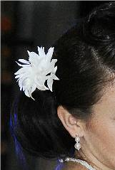 Kvet do vlasov,