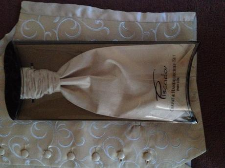 Nadherna vesta +kravata, 46