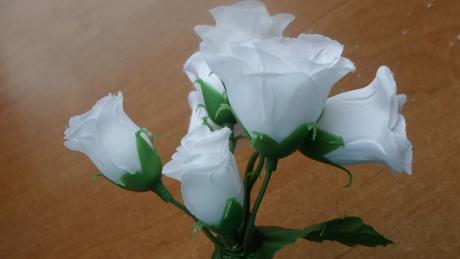 ružičky na stonke,