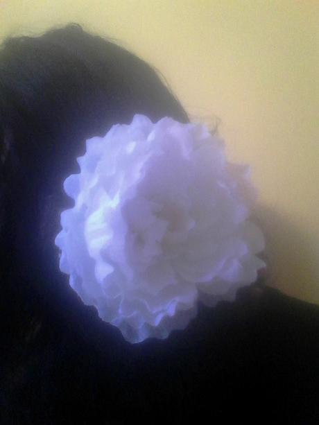biela pivonia 12cm,