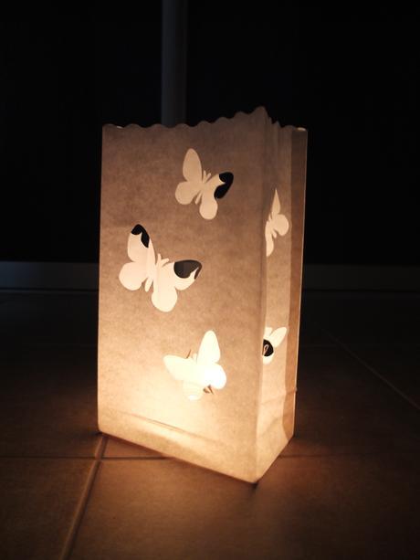 Lampiony - motýlci,
