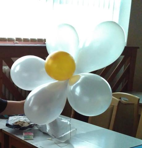 plast na vytvorenie margaretky z balonov - 10 ks,