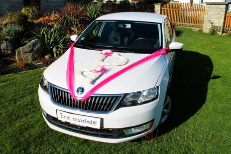 Set dekorace na auto Sisal fuchsie,
