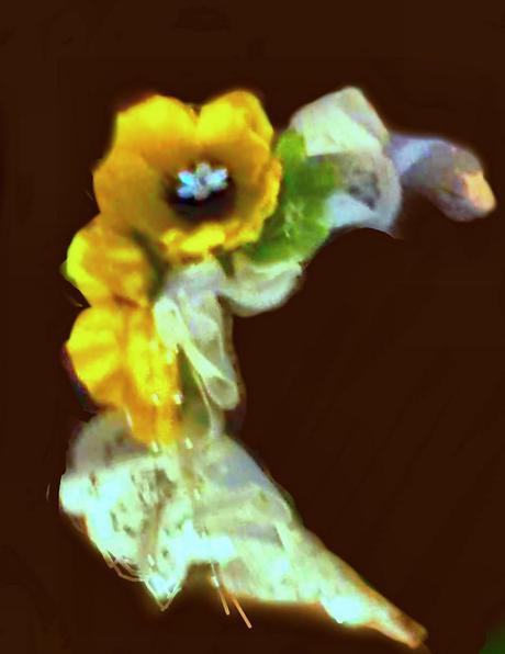 Čelenka se žlutými kvítky,