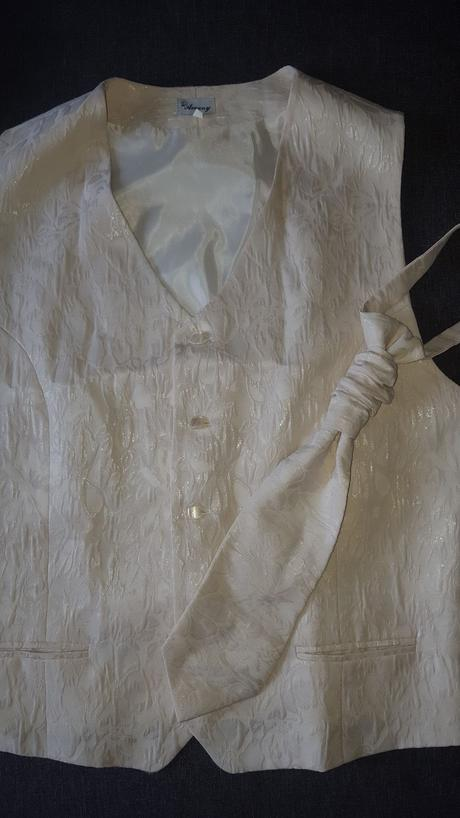 Pánska vesta s kravatou, 50