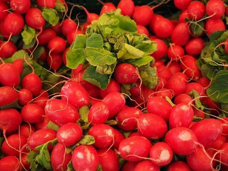 červená domáca redkovka guličky/ cca 40 semienok ,