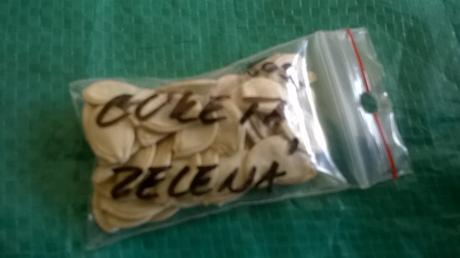 Cuketa semiačka 1 balenie,