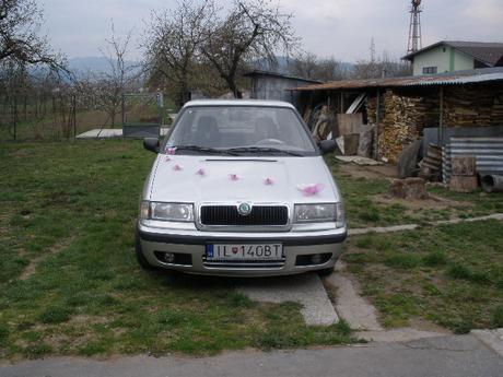 ozdoba na auto motyle s prisavkami,