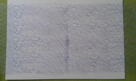 Pavucinova organza (63,5 m) + perlickove girlandy,