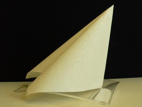 Airlaid ubrousky LIAS 40x40 cm White,