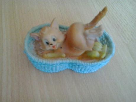 mačička v košiku,
