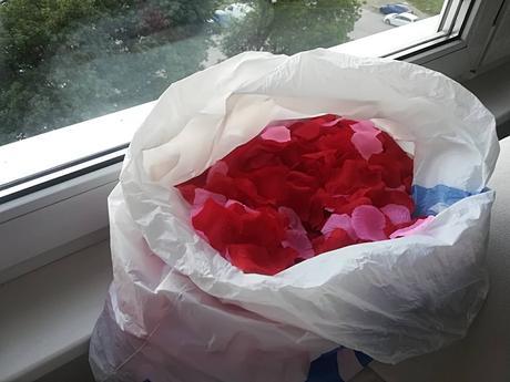 cervene a ruzove lupene 5 EUR, Velky bal,
