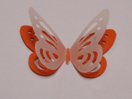 Motýli,