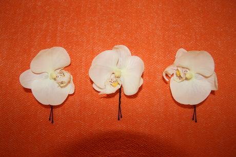 Orchidey do vlasov - spony,