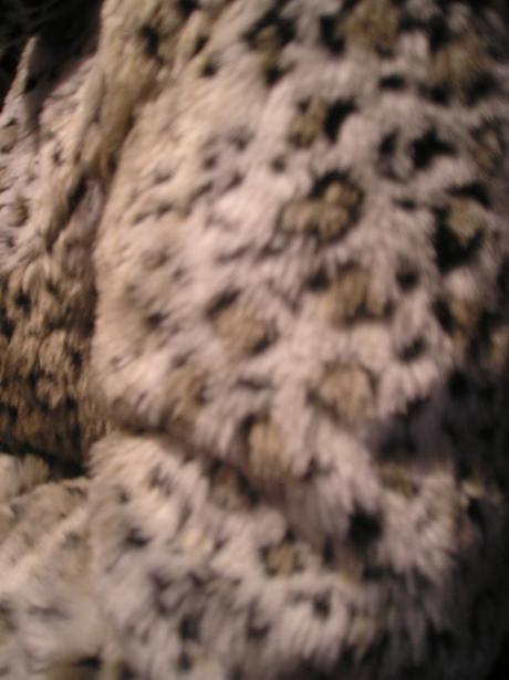 Tigrovaný kožuštek, 48