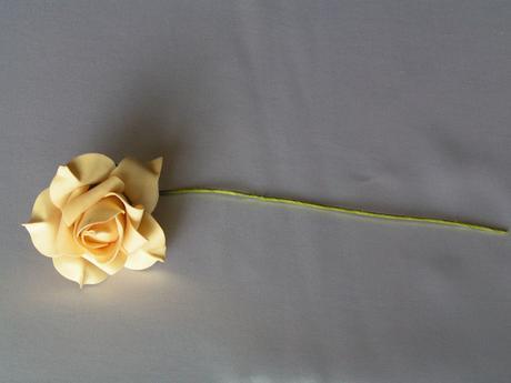 Béžové pěnové růže,