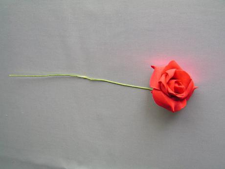 Červené pěnové růže,