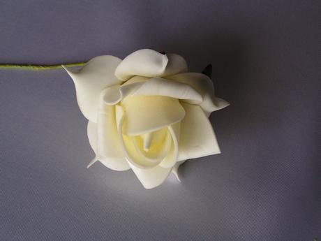 Krémové pěnové růže,