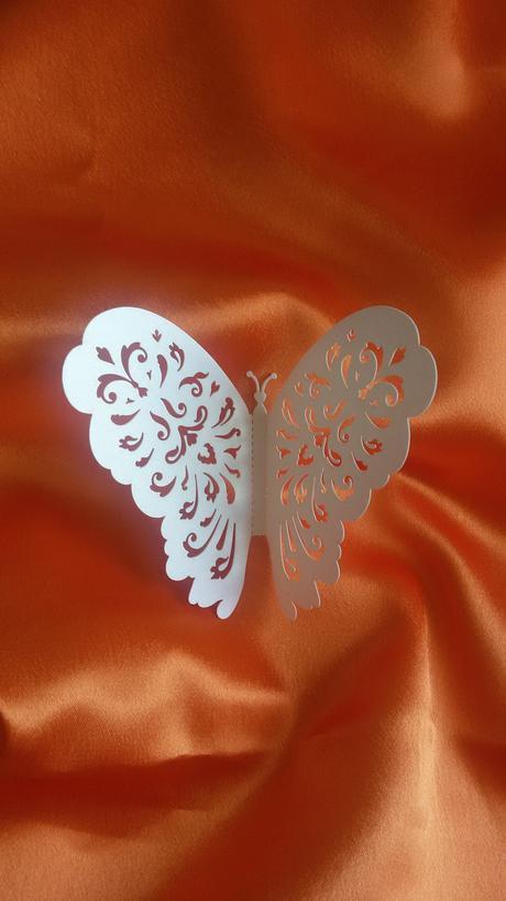 Motýl,