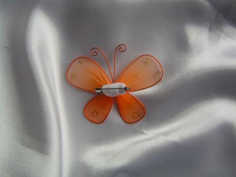 Motýl na zavíracím špendlíku,