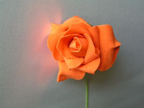 Oranžové pěnové růže,