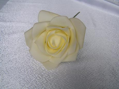 Pěnová růže,