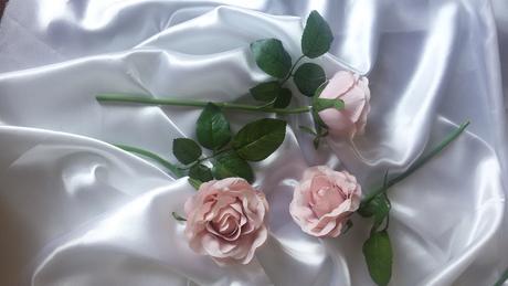 Růžová růže s listy,