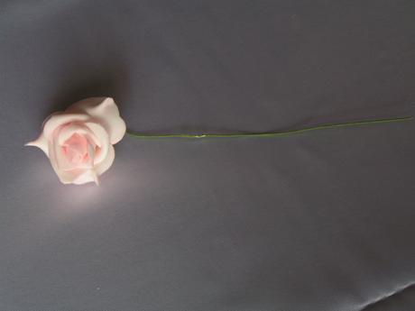 Růžové pěnové růže,