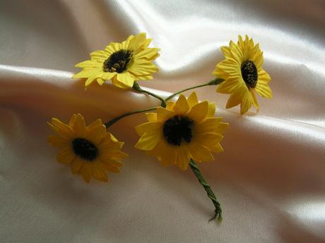 Slunečnice,
