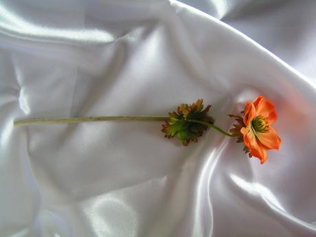 Umělá květina - anemon,
