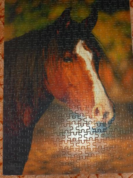 rozne druhy puzzle,