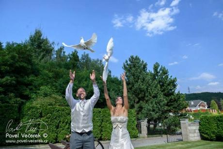 Vypouštění holubic z rukou novomanželů,