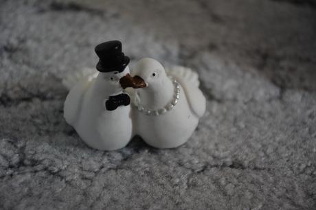 Svatební hrdličky holoubci ženich a nevěsta,
