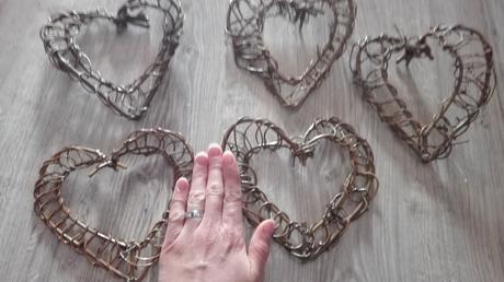 5 ks srdcí vinná réva,