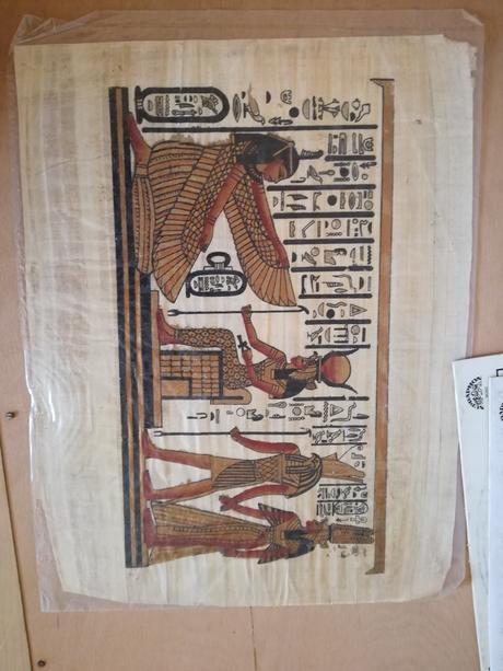 Egypský papyrus-2ks,