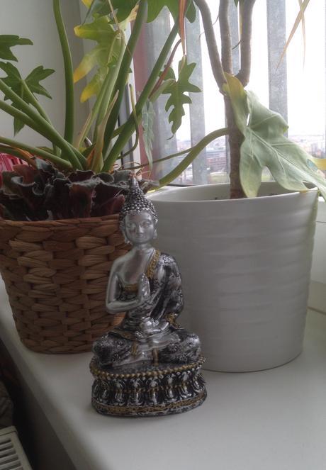 Budha,