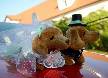 Ozdoba na auto ženicha nebo nevěsty,