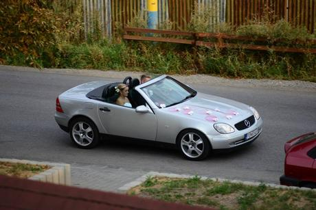 Ratanová výzdoba na auto,