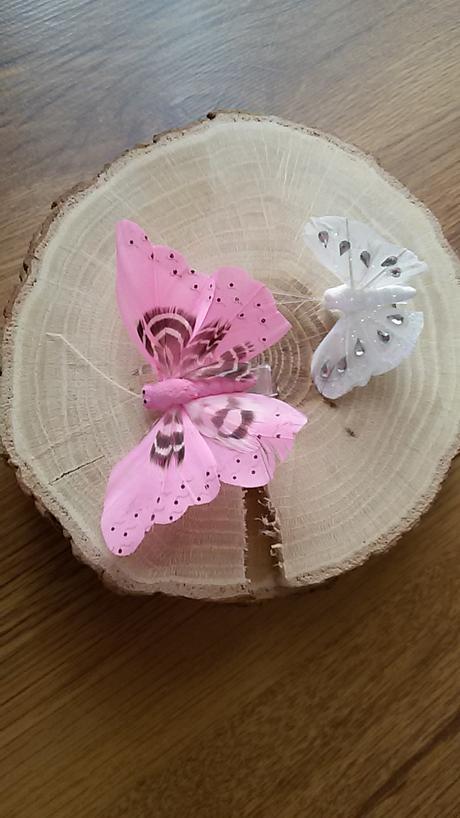 Motýlci ,