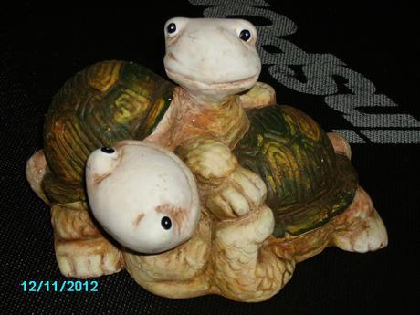 Korytnačky,