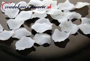 Lupienky ruží  biele  100 ks ,
