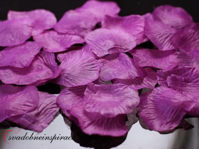 Lupienky ruží - fialovo-ružové,