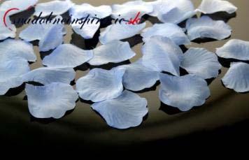 Lupienky ruží - Modré 100 ks za 1 Eur,