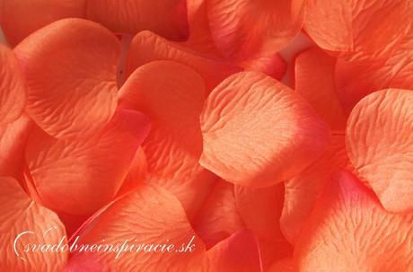Lupienky ruží - Oranžové (100 ks),
