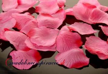 Lupienky ruží - ružové,