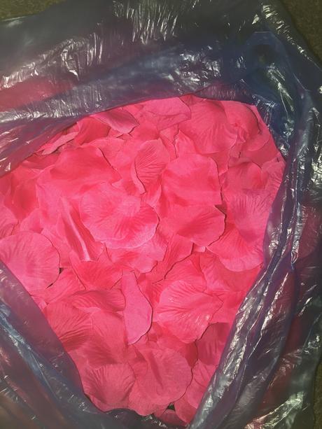 Okvětní plátky růži fuchsia 350-400 ks,