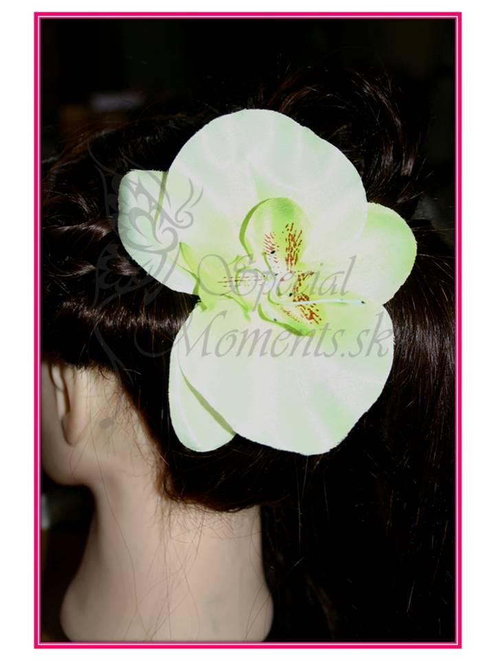 Orchidea do vlasov veľká - 4 farby 3ace4adcb6b